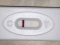 Pregnancy test negative – pictures 10