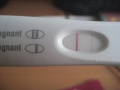 Pregnancy test negative – pictures 17