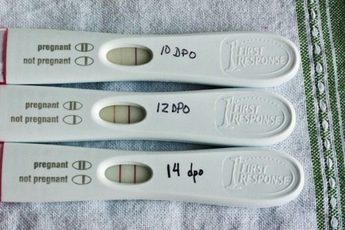 Earliest Home Pregnancy Test Can Give Positive Result