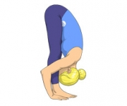 THE INTENSE STRETCHING POSE - Uttanasana
