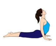 THE SNAKE POSE OR COBRA POSE - Bhujangasana
