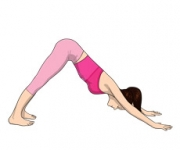 THE POSE OF THE DOG - Adho Mukha Of Svanasana