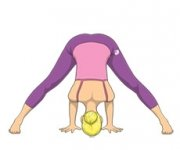 THE STRETCHED POSITION OF THE FOOT - Prasarita Of Padottanasana