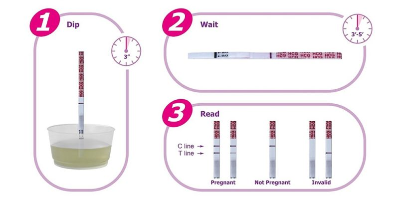 How to use pregnancy test