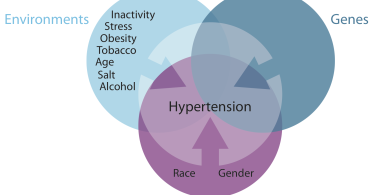 Hypertension - high blood pressure