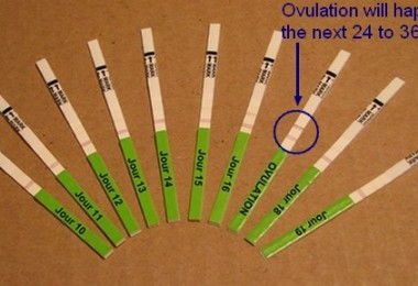 Ovulation disorder – causes and consequences