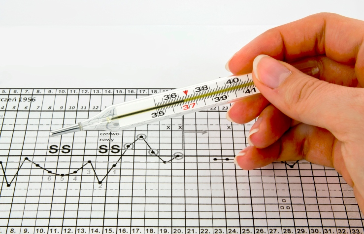 Schedule calculate ovulation by measuring basal body temperature