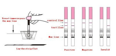 Strip on pregnancy test - how use