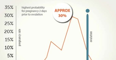 What probability to become pregnant with the 1st times