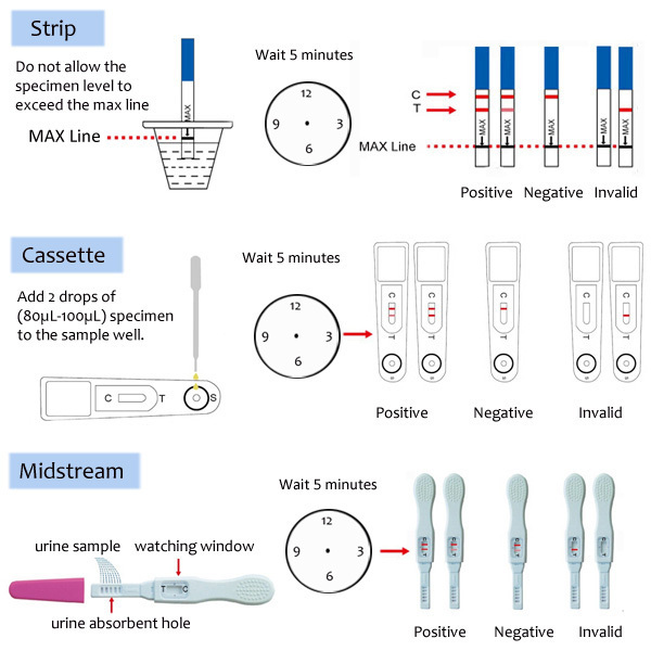 Test strips pregnancy - how to use them and how reliable the