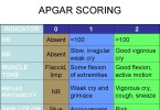 The Apgar scale - what is the assessment of the newborn table Apgar
