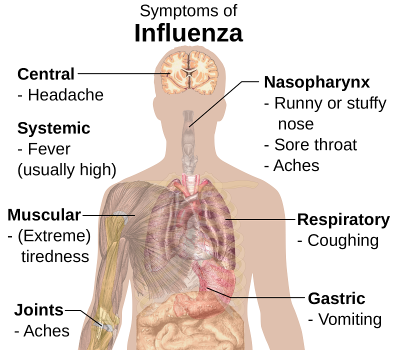 Treatment of influenza in a child