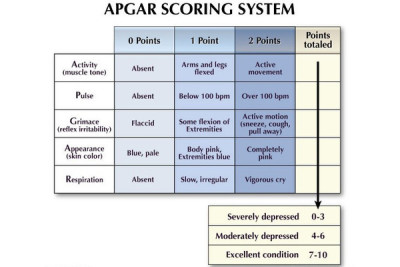 What is needed and What estimation on Apgar scale