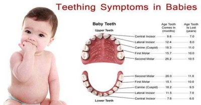 Symptoms of tooth growth in a child