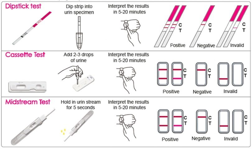 Pregnancy Test Positive And Negative Pictures Health