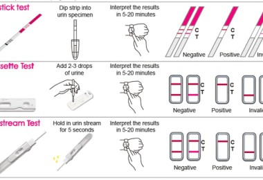 Pregnancy test – positive and negative