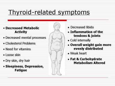 Symptoms and course of typhoid fever