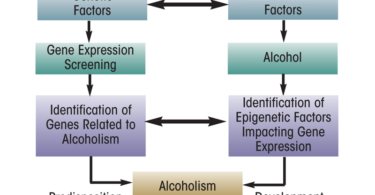Genetic alcoholism - alcohol abuse is hereditary