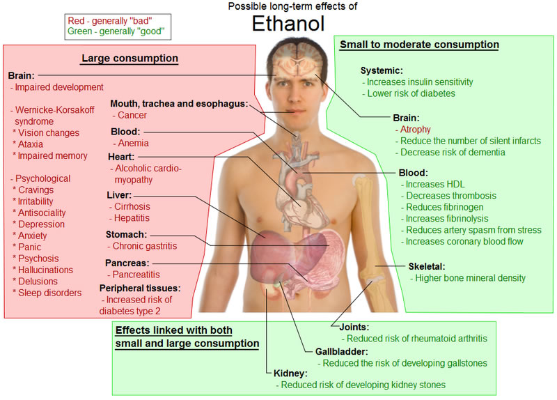 Impact of alcohol on health