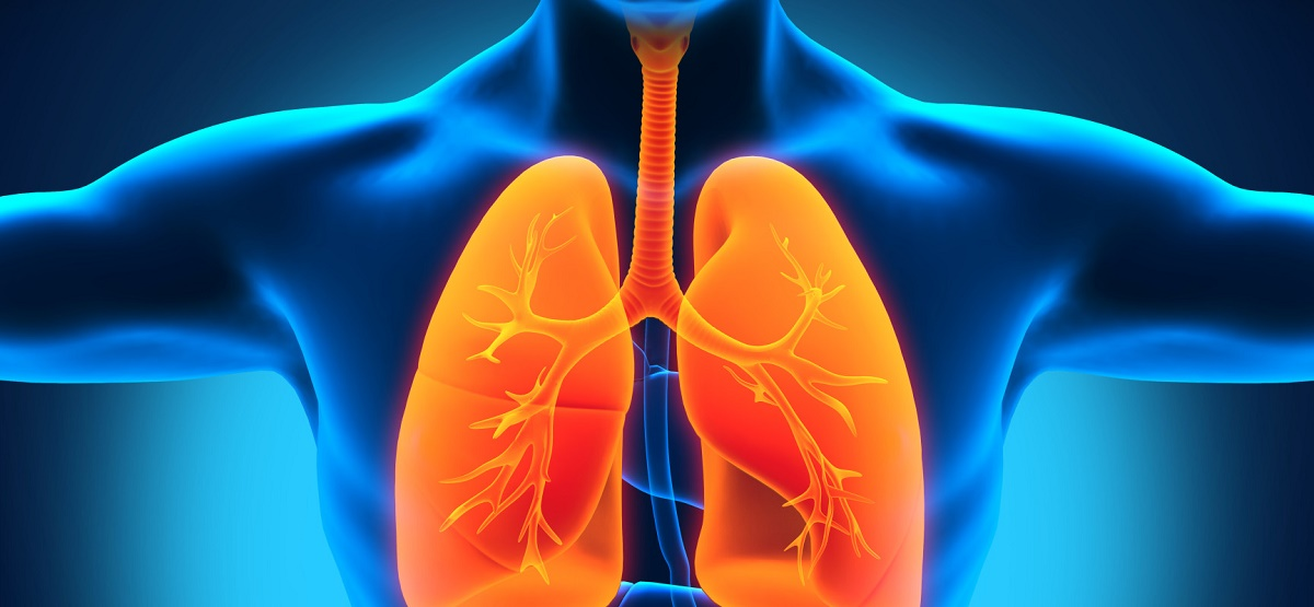 The effect of alcohol on the lungs