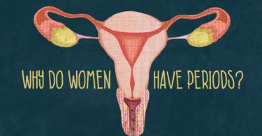 Why Do Girls (Women) Have Periods