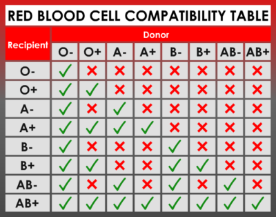 Blood type and rh factor chart