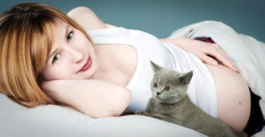 Risks of Toxoplasmosis: Cats and Pregnancy
