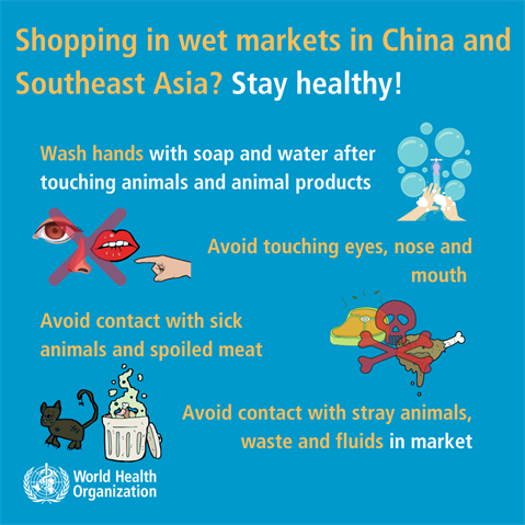 shopping-working-in-wet-markets-in-china-and-southeast-asia-1