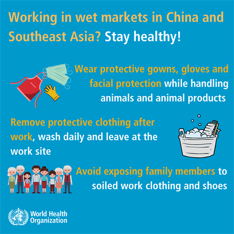 shopping-working-in-wet-markets-in-china-and-southeast-asia-2