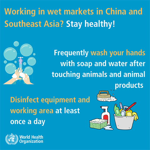 shopping-working-in-wet-markets-in-china-and-southeast-asia-3