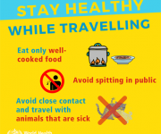 stay-healthy-while-travelling-5